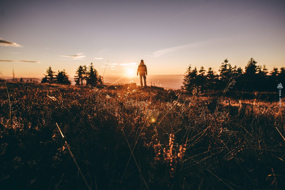 Follow Me: Enjoying the 'Black Forest' Sun, Germany