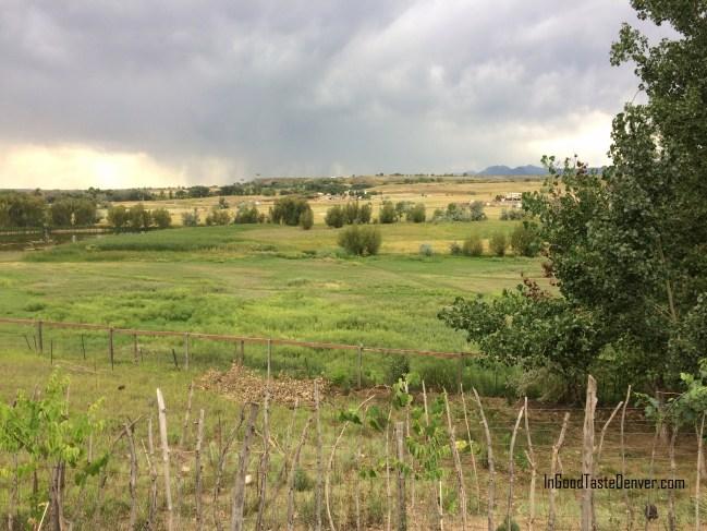 Boulder Farm Trail