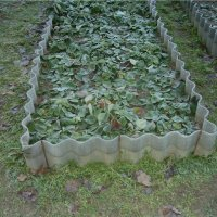 Gradina de legume organice Rusia