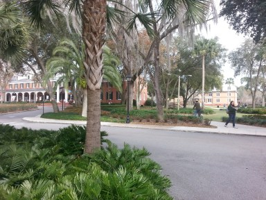Walking at Stetson, with the student hub to the left (pictured), fields to the right, and the academic quad to the right beyond the frame