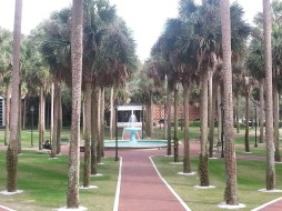 The fountain and library across the quad