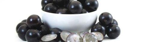 Nostálgicas e saborosas, jabuticabas são a riqueza de Sabará
