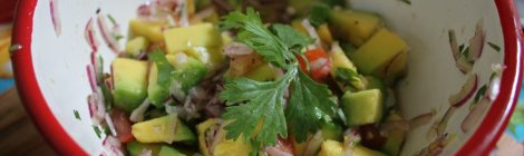 Ceviche de Abacate
