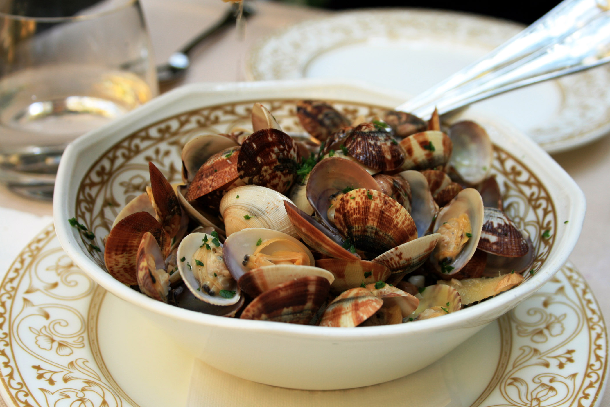 Clams in Ginger and White Wine