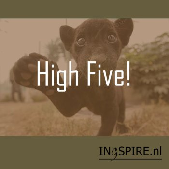 Spreuk: High Five!