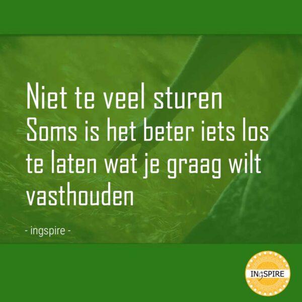 Uitspraak ingspire.nl: Niet te veel sturen. Soms is het beter iets los te laten wat je graag wilt vasthouden