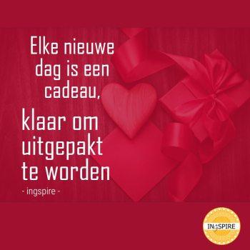 Elke dag nieuwe dag is een cadeau klaar om uitgepakt te worden | spreuk van ingspire.nl