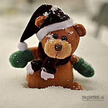 Knuffel voor de feestdagen!