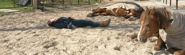 Rouwverwerking - Ziekte en herstel met hulp van paarden - ingspire