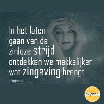In het laten gaan van de zinloze strijd ontdekken we makkelijker wat zingeving brengt. Zingevings quote van ingspire.nl