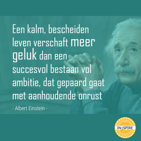Citaat Albert Einstein - Een kalm bescheiden leven