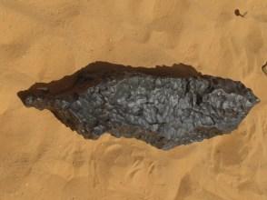 meteorite ritrovato nei pressi del cratere da impatto Kamil. Foto di S. Urbini