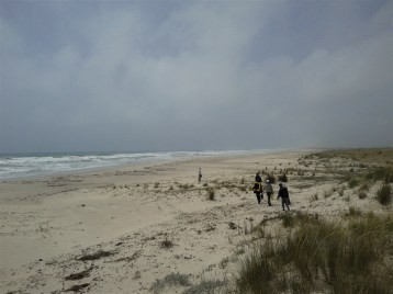 Misure geofisiche nella suggestiva sabkha, una distesa di sabbia e sale nel territorio di Korba, in Tunisia nell'ambito del Progetto Improware . Foto di V. Sapia © INGV