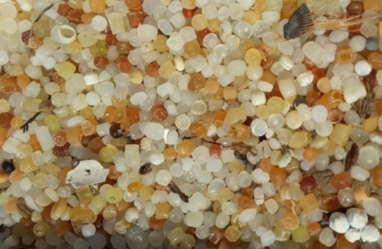 Le microplastiche: non tutto il male vien per nuocere