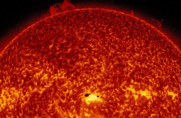 Com'è fatto il Sole?