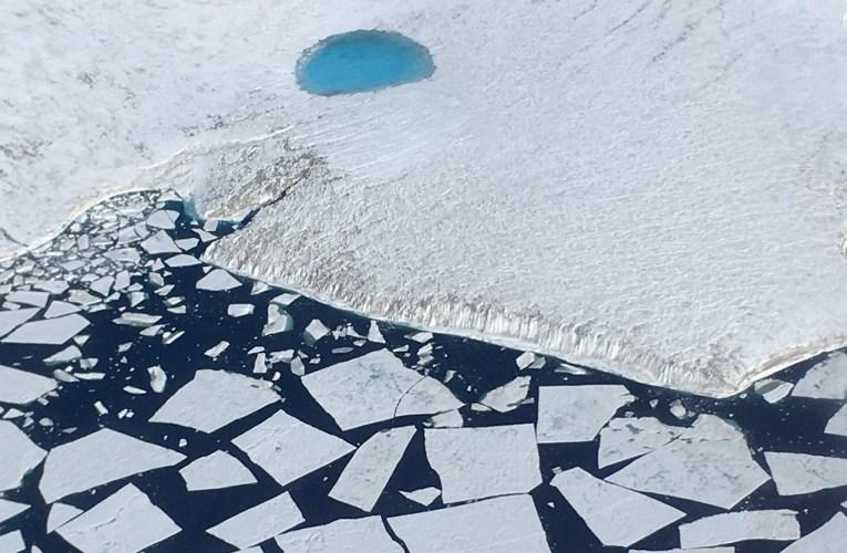 Galleria fotografica: Antartide