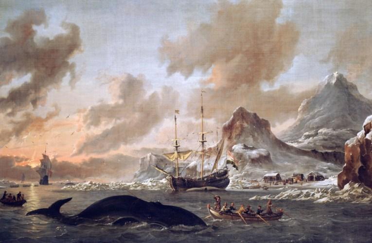 Le isole Svalbard: dal Trattato alla ricerca scientifica