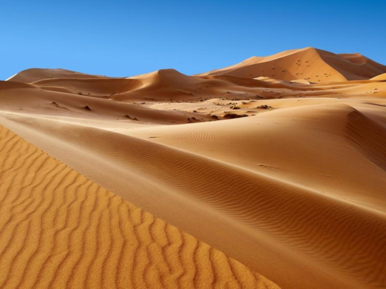 Gadoufaua il cimitero dei dinosauri nel deserto Ténéré