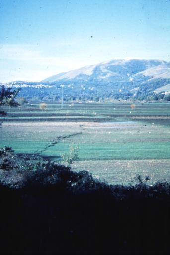 Scarpata di faglia del 1980 attraverso la Piana di San Gregorio Magno, alla terminazione sud della rottura dove il rigetto verticale era di 20-40 cm.