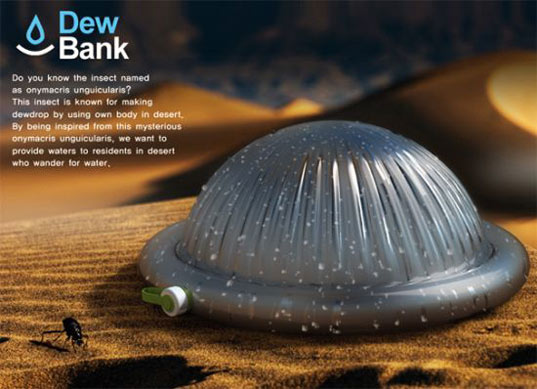 dew bank, water, fog, beetle, harvesting, collecting, desert, nomad, eco, green, sustainable, design, IDEA Awards, biomimicry, water bottle