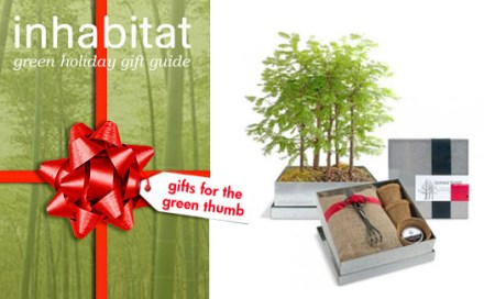 Eco Friendly Holiday Gifts for Green Thumbs    Inhabitat   Green     Design