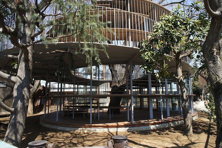 Tezuka Architects Amazing Fuji Kindergarten Wraps Around A 100 Year Old Zelkova Tree