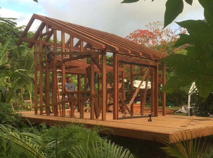 Artist Builds Gorgeous 200 SqFt House Out Of 25000 Pounds Of Salvaged Redwood In Hawaii