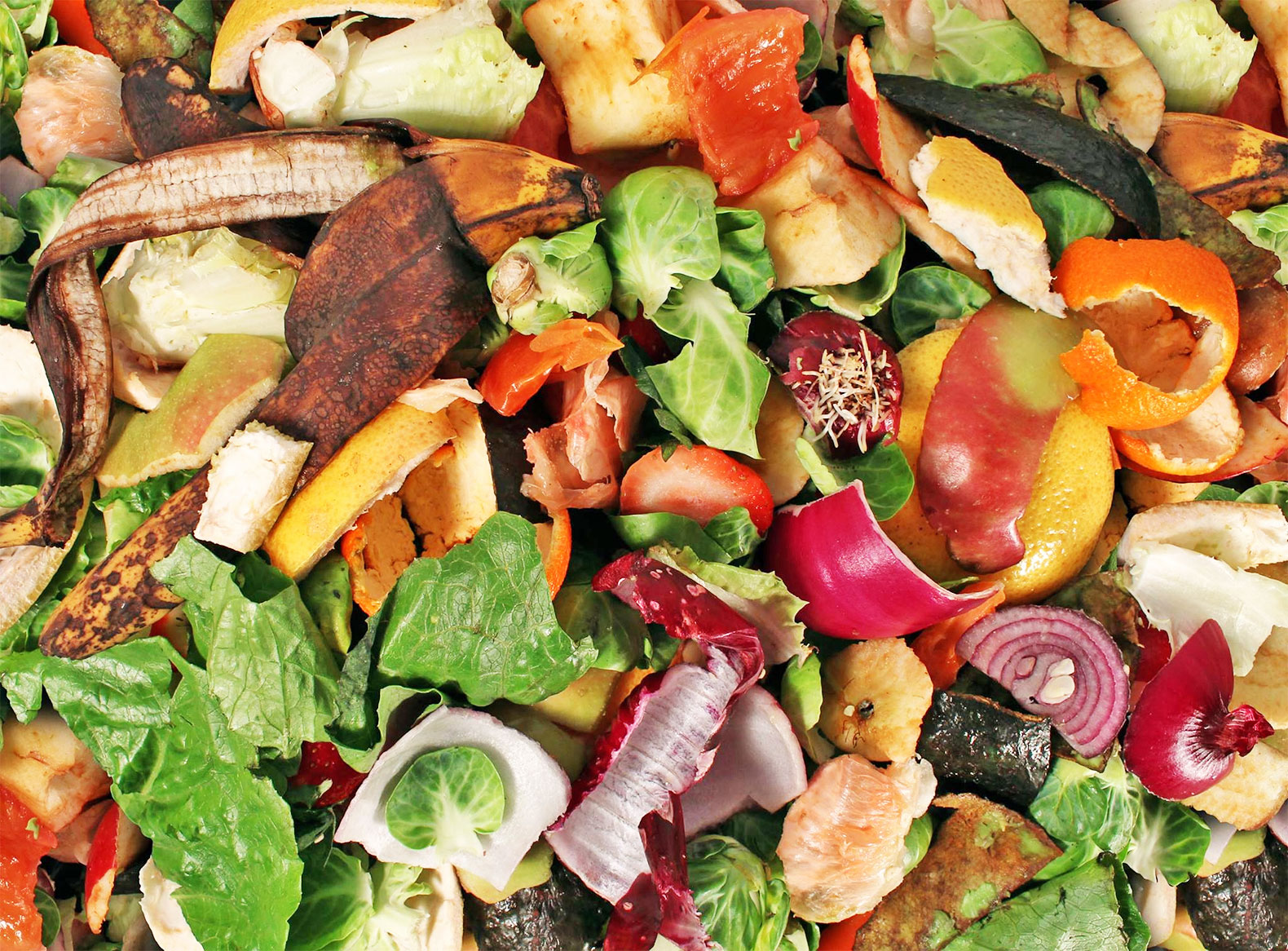 Nyc To Triple Food Waste Compost Program In To Reach