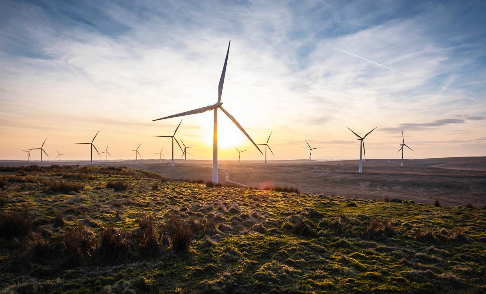 Wind Energy Inhabitat