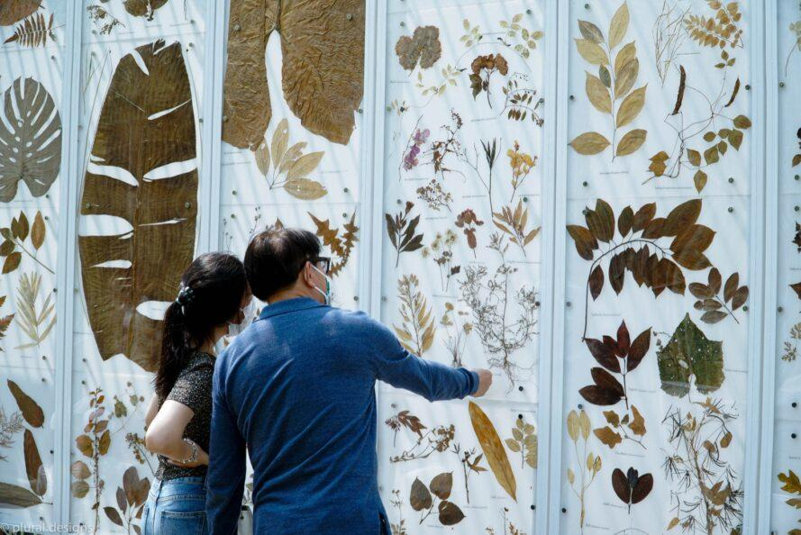 people looking at leaf print wall art