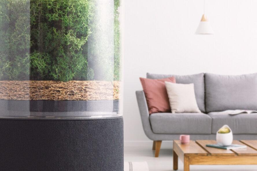 air purifier in the foreground with gray couch in the back ground