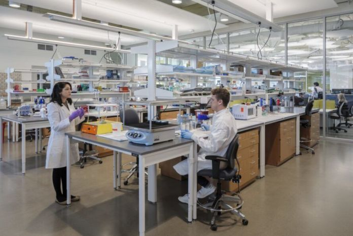 People working in a lab