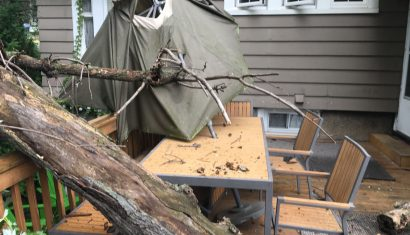 Fallen tree tree damage tree fell on deck maplewood nj