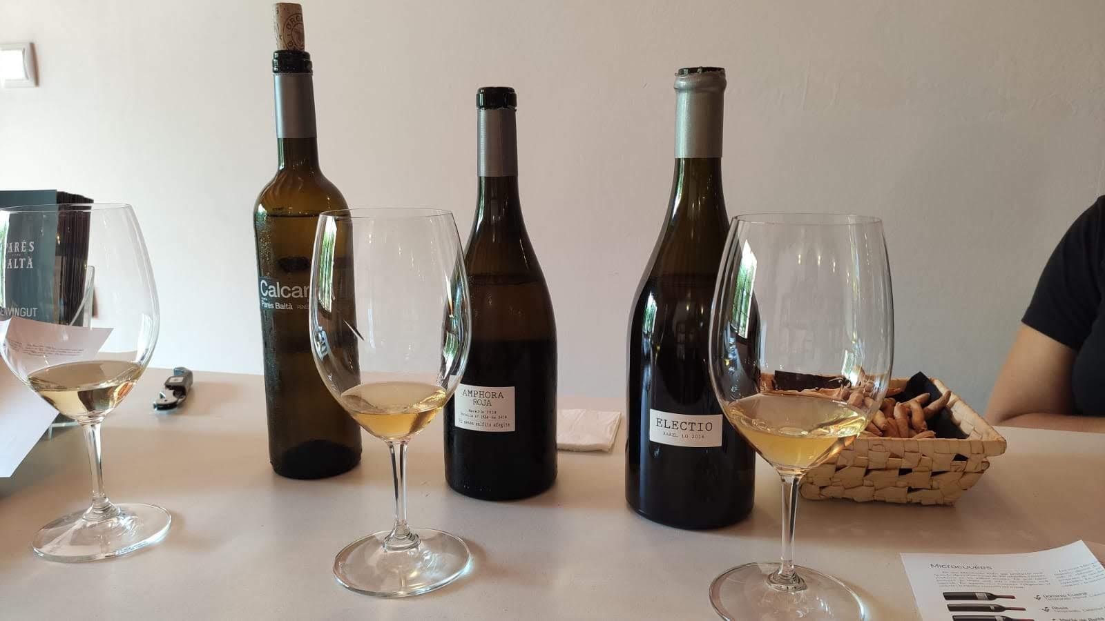 Witte wijnen Parés Baltà