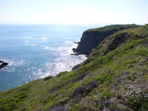 Looking northward on the Mendocino coastline, and its prominent marine terrace.