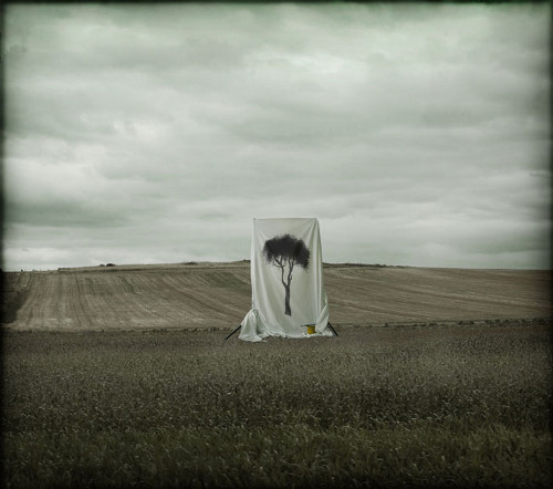 Pintar el futuro de Cristina Molino Zorraquino