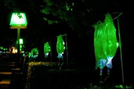 El jardín botánico por Luz Interruptus en La noche en blanco 2009