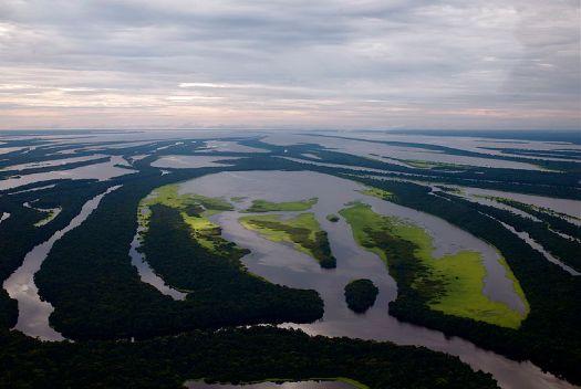 அமேசன் ஆறு
