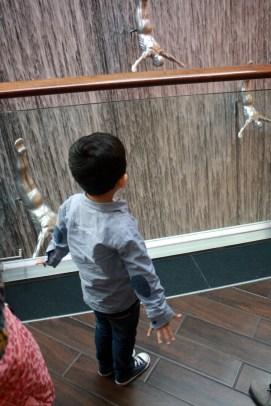 Nov 15 03_Dubai Mall-059