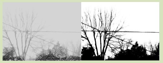 Digital phots showing effect of high contrast