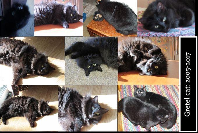 Photo collage black cat Gretel in memoriam