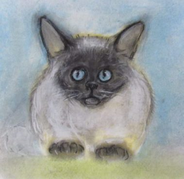 Flash Fiction drawing of a ragdoll cat art for Peckish