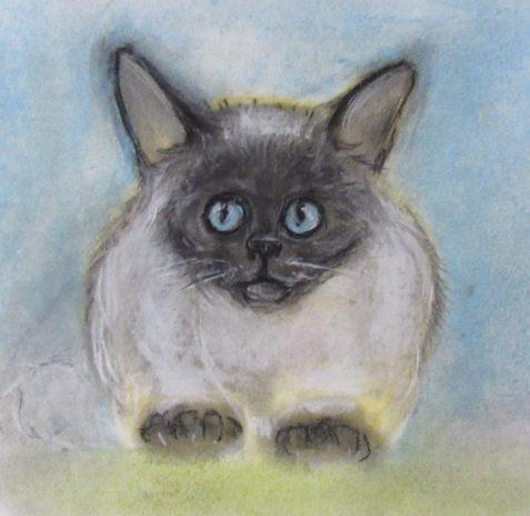 Pastel drawing of ragdoll cat