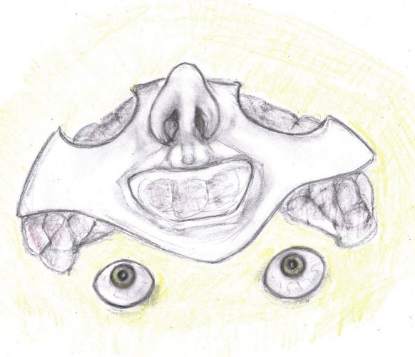 Pencil drawing of detached face and brain
