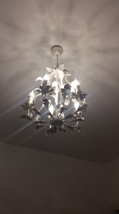 i need this chandelier