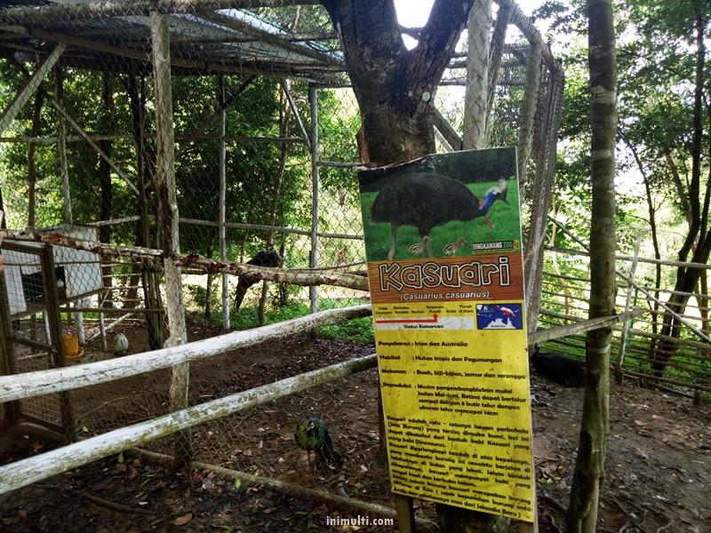 kasuari-sinka-zoo-singkawang