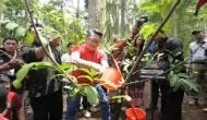 Permalink ke Kang Emil Ikut Menanam 220.022 Bibit di Gerakan Leuweung Padjadjaran