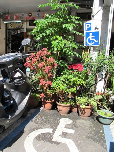 There's planting a mini gardens EVERYWHERE in Taiwan. Here someone has made a very attractive spot for a disabled driver.