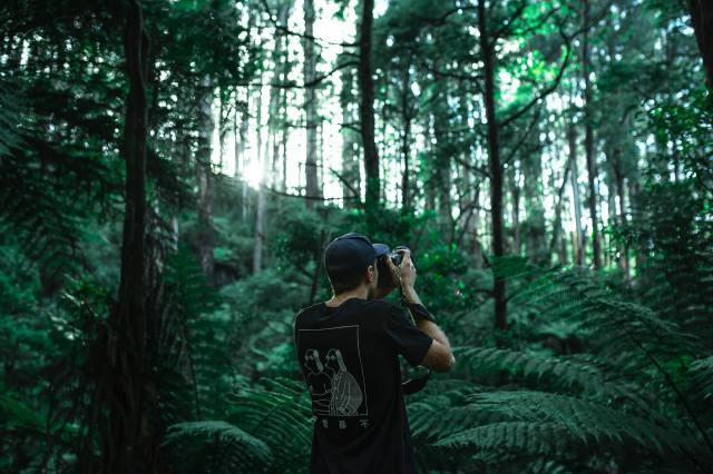 initiationphoto - évoluez en prenant 3 photos par jour
