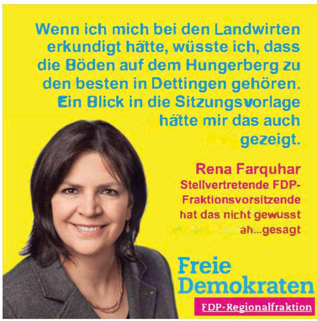 (Un-)Sachlichkeit in der Regionalversammlung Stuttgart